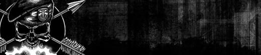 www.die-german-crew.de/bfbc2sig/TodesEngel.png